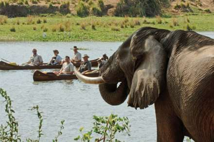 Canoe and Kayaking Safaris