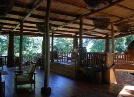 The Rainforest Lodge, Mabera Forest NP