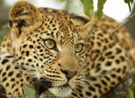 Luxury Self Drive South Africa With Mozambique