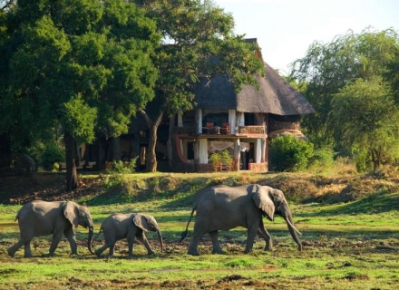Luangwa Safari House - South Luangwa National Park