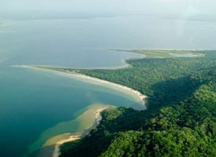 Thonga Beach Lodge - Elephant Coast