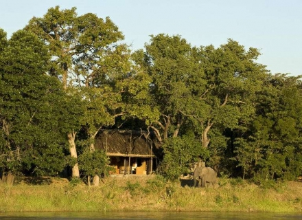 Kapamba Bushcamp - South Luangwa National Park