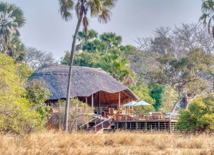 Katavi Wildlife Camp - Katavi Plains Nat