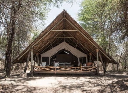 Jongomero - Ruaha National Park