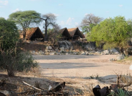 Mwagusi Safari Camp - Ruaha National Park