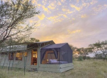 Asilia Olakira Migration Camp - Serengeti