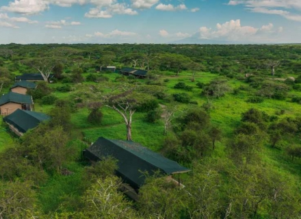 Lemala Mara and Ndutu Tented Camp - Serengeti National Park