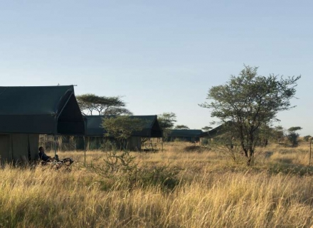 Chaka Camp - north Serengeti and Ndutu