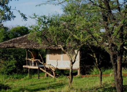 Mbalageti Tented Lodge -  Serengeti