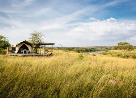Singita Mara River Tented Camp - Northern Serengeti