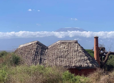 Tawi Lodge - Tawi Conservancy - Amboseli National Park