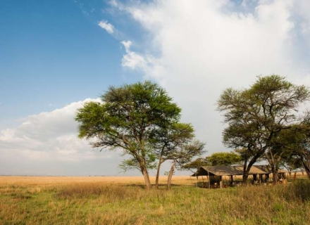 Nomad Serengeti Safari Camp - Serengeti National Park