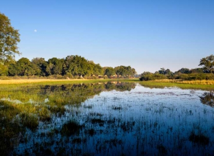 Sanctuary Chief's Camp - Moremi Game Reserve - Okavango Delta