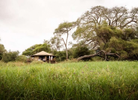 Sanctuary Swala - Tarangire National Park