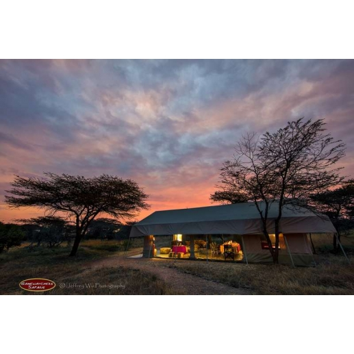 Porini Bush Camp - Ol Kinyei Conservancy - Masai Mara