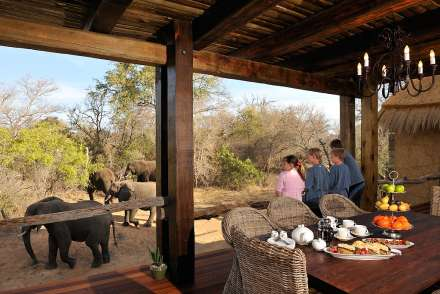 Camp Jabulani - Kapama Game Reserve