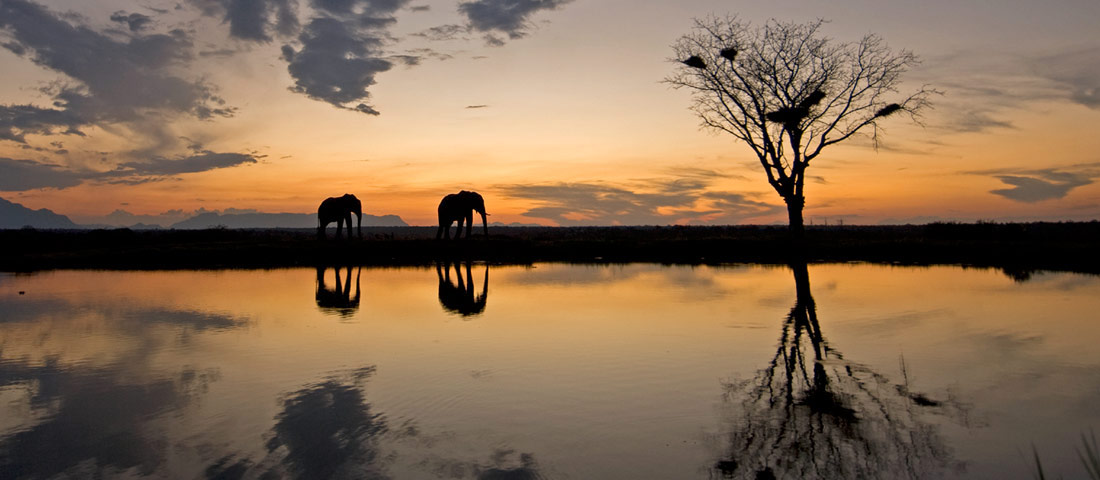 Elephantback Safaris