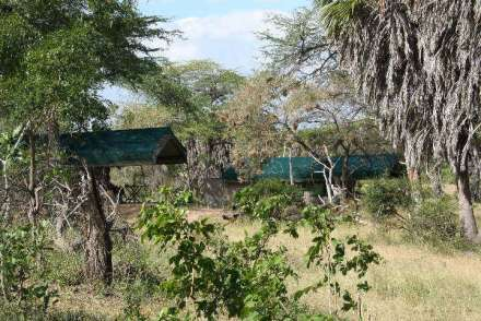Lake Manze Tented Camp