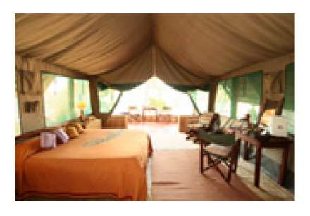 Mwagusi Safari Camp - Ruaha National Par