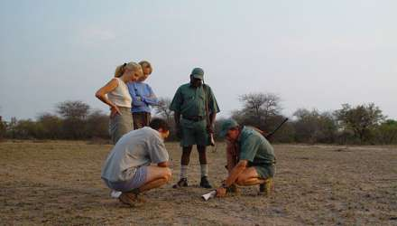 Rhino Walking Safaris - Kruger Private C